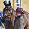 Fernhill Now Or Never wondering what all the fuss is about at the other side of the archway, as he waits to be presented by Kate Honey