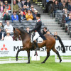 Fernhill Pimms looking fantastic with William Fox-Pitt