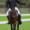 William Fox-Pitt aboard Fernhill Pimms