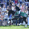 Classic Moet motoring around on her lap of honour with Jonelle Price