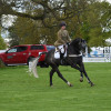Nana Dalton competing in the Dubarry Burghley Young Event Horse class
