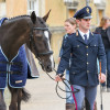 'Mouse' being prepared for the final horse inspection