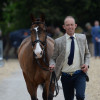 Irishman, Jonty Evans enjoying his time at the first horse inspection