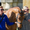 Zara Tindall with High Kingdom