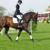 Previous Badminton winner Lucinda Fredericks rides her homebred stallion Britannia's Mail