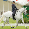 Vittoria Panizzon with Borough Pennyz during dressage at the Badminton Horse Trials 2013