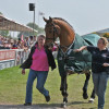 Tamarillo leaves the arena for the last time, but he isnt going quietly!