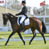 Jonathan Paget (NZL) riding Clifton Promise