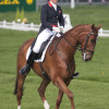 Lucy Wiegersma riding Woodfalls Inigo Jones
