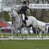 Andrew Nicholson (NZL) riding Avebury