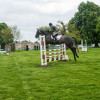 Emily Young-Jamieson jumps Dreamliner in the Dubarry YEH class showjumping phase