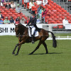 Kristina Cook (GBR) riding De Novo News