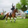 Ingrid Klimke delighted with 2nd