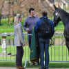 Nicola Wilson discusses Opposition Buzz's trot up with her husband and Lynn her groom