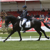 Ingrid Klimke (GER) riding FRH Butts Abraxxas