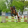 Pippa Funnell jumping a young horse in the Dubarry YEH class