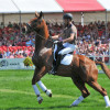 Ulrik Molgaard's young horse is scared of the crowd