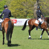 Jock Paget and Michael Jung wait to jump