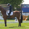 Sarah Wardell (IRL) and Killeenduff Boy begins their dressage