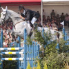 Mark Todd on NZB Land Vision wins Badminton 2011