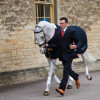 Paul Tapner warming up for the trot up