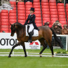 Pippa Funnell riding Billy Beware GBR in Dressage