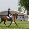 Mary King and Inperial Cavalier in 13th position