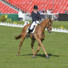 Oliver Townend riding Armada