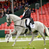 Paul Tapner (AUS) riding Kilronan