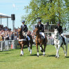 Retirement of Headley Brittania, INoNothing and Lenamore  at the Badminton Horse Trials 2013