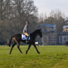 Early morning exercise in front of Badminton House