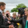 William Fox-Pitt being interviewed by Clare Balding