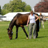 Comanche grazing with trainer Helena Charlesworth