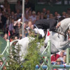 The last fence and he's done it - Mark Todd the 2011 Winner