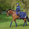 Zara Phillips and High Kingdom head back to the stables