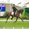 Stefano Brecciaroli (ITA) riding APOLLO VD WENDI KURT HOEVE.