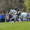 Andrew Nicholson and Avebury ride on unflustered despite the presence of a loose dog