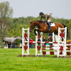 David Doel jumps a young horse Dunges Don Perignon in the Dubarry Young Event Horse class
