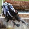 Andrew Hoy (AUS) riding Rutherglen