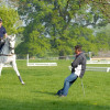 Ian Woodhead helps Oliver Townend