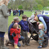 Eventing youngsters