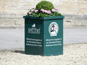 Yard decor - The Spillers boxes adding a bit of colour to the stables