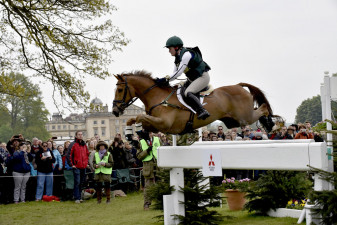'Euro Prince' absolutely flying