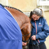 Lucy Seddon having a moment with 'Toledo de Kerser' prior to the final horse inspection