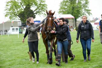 'Dassett Cool Touch' being attended to post-XC