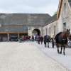 Form an orderly queue - The horses wait their turn in the stables