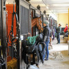 Full steam ahead at the stables on Thursday morning