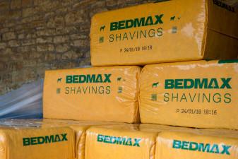 Bedmax Shavings