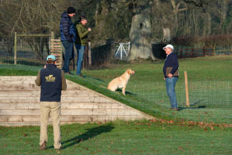 Dogs can also enjoy course inspections too