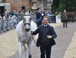 Every the showman, Oliver Townend catches the camera